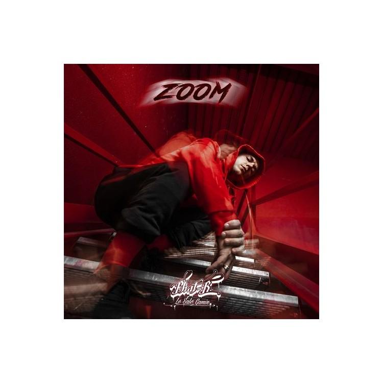 """Zoom """"Fhat-R"""" cd plexi"""