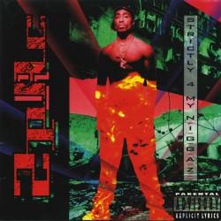 "2Pac ""Strictly 4 my niggaz"" Double Vinyle"